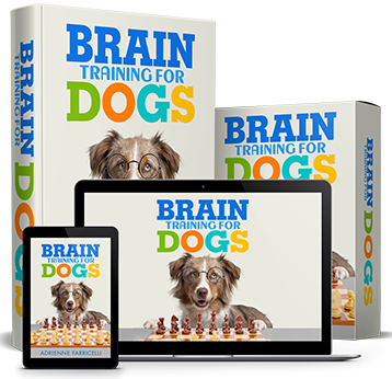 braintraining4dogs discount - Get Brain Training for Dogs for JUST $1